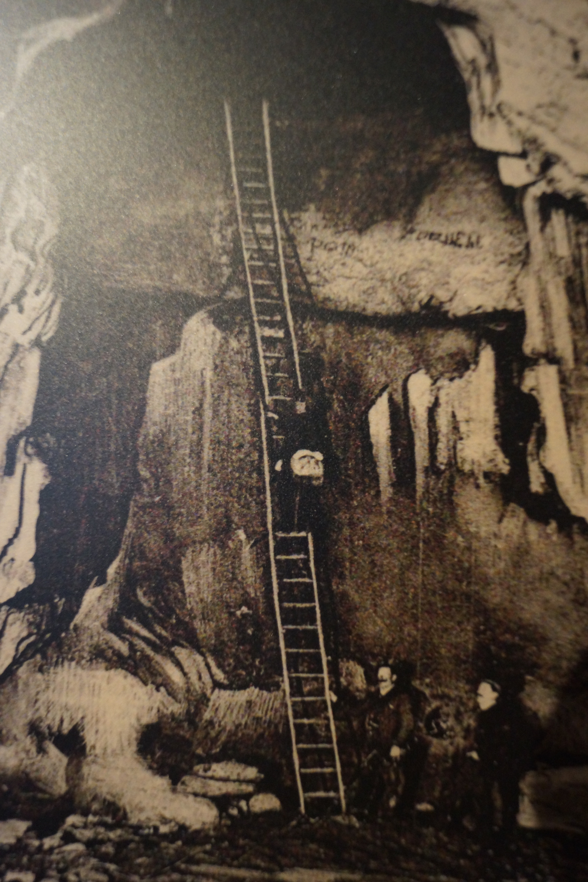 History the great ladder first explorations grotte saint marcel